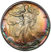 Ms67 1987 1 Ase Silver Eagle Dollar Pcgs Secure- Pretty Rainbow Toned