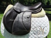 16/16.5 Voltaire Palm Beach Buffalo Close Contact Jumping Saddle 2a Flaps-2016