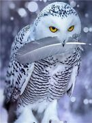 Winter Feather Snow Owl Bird Animal Paint By Numbers Canvas Wall Art Painting