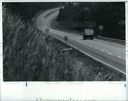1987 Photo Road Section Site Of Traffic Death Runaway Trucks 10x8