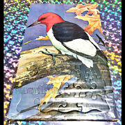 Red Headed Woodpecker Puzzle Vintage 1967 Springbok Jigsaw Roger Peterson Rare