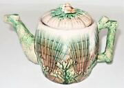 Griffen, Smith And Hill, Etruscan Majolica Shell And Seaweed, Coffee Pot, 6 1/4 A