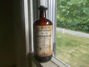 Fluid Extract Cardamom Eli Lilly Indy 100 Yr Old Medicine Bottle With Labels