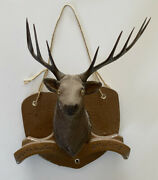 Canadian Ace Beer And Ale Canada Deer Vintage Rare Whitetail
