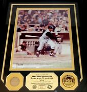 Roberto Clemente Highland Mint Game Used Bat And Medallion Framed Photo 312 Of 375