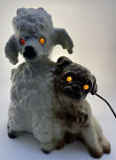 Howard Kron 1950s Poodle Pug Dogs Texans Inc Lighted Tv Lamp Console Bangs Texas