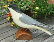 Least Tern Shore Bird Hand Carved And Painted Jim Slack Pekin Il Decoy Carver