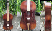 Copy Of Old Type Instrumentsong Maestro 5 Strings 4/4 Viellemedieval Cello