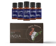 Mystic Moments Oils Of India Essential Oils Gift Starter Pack