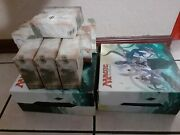 Magic The Gathering - Collection 1000+ Cards   Avacyn, Angel Of Hope   Elvish