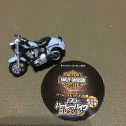 Canned Coffee As Hot Change Harley-davidson Dyna Low Rider