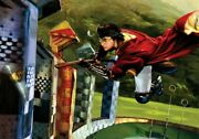 Jim Salvati Harry And The Golden Snitch From Harry Potter Disney Fine Art