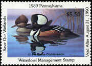 Pennsylvania 7 1989 Hooded Merganser State Duck Stamp By Ronald Louque