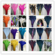 Wholesale 15-1000pcs High Quality Rooster Tail Feathers 12-14 Inches/30-35cm