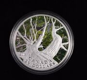 2013 20 Fine Silver Coin Canadian Maple Canopy Spring Signed Emily Damstra Rare