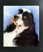 English Springer Spaniel Dog Close-up Wall Art Contemporary Black Framed Picture