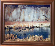 Canadian Geese On Lake Mcgraw Wildlife Birds Wall Decor Art Print Framed Picture
