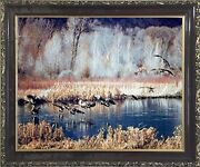 Canadian Geese On Lake Mcgraw Wildlife Birds Wall Decor Framed Art Picture