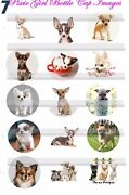 Chihuahua Dogs Doggy Puppies 10 Donaton Humane Soc 15precut Bottle Cap Images