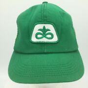 Vtg Pioneer Seed Sewn Patch Front Green Snapback Hat Cap K Products Made In Usa