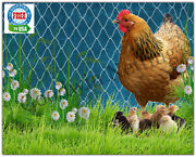 Poultry Netting 12and039 Game Bird Aviary Chicken Nets Plant Protective Net Duck Pen