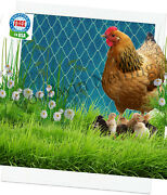 Poultry Netting 25and039 Quail Chicken Chicks Game Pen Bird Nets Protective Plant Net
