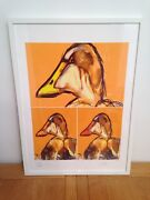 Duck Selfie - Jilly - Signed Print By Keith Browning / Framed 53x73cm