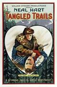 Tangled Trails Poster//tangled Trails Movie Poster//movie Poster//poster Reprint