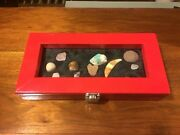 Rock Gem Shell And Artifact Display Case For Any Age Custom Colored Red