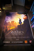 Fantastic Beasts Where To Find Them A 4x6 Ft Shelter D/s Movie Poster Original