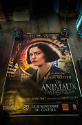 Fantastic Beasts Where To Find Them D 4x6 Ft Shelter D/s Movie Poster Original