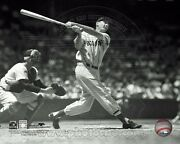 Ted Williams Licensed Boston Red Sox 8x10 Photo Fenway Park Licensed