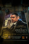 Fantastic Beasts Where To Find Them E 4x6 Ft Shelter D/s Movie Poster Original