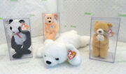 Super Rare Large Chilly 13 And 3pc 9 Hopefortunedearest Ty Beanie Babies