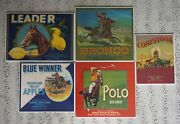 Crate Labels With Horses 5 - Conestoga, Polo, Bronco, Blue Winner, Leader