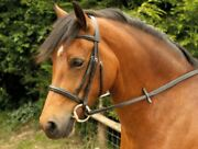 Windsor Leather Cavesson Snaffle Horse Riding Bridle And Reins Black Or Havana