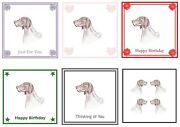 German Shorthaired Pointer Card By Curiosity Crafts Birthday Thinking Of You