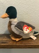 Jake- Rare And Retired Ty Beanie Baby Collectible- 1997/1998 Tag With Errors