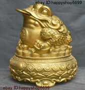 13 China Copper Brass Fengshui Animal Golden Toad Spittor Yuan Bao Coin Statue