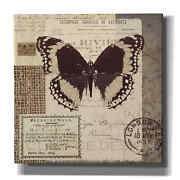 Epic Graffiti 'butterfly Stamp' By A.v. Art, Giclee Canvas Wall Art