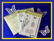 Stampin' Up Butterfly Basics Stamp Set And Butterflies Thinlits Dies