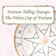 Aynsley Nelros 2018 Cup Of Fortune, Tea Leaves, Halloween, Fortune Telling Lim