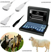 Vet Veterinary Ultrasound Scanner For Equine/cows/sheep Use Rectal Contec New