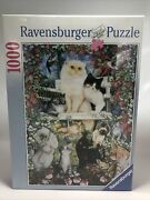 Ravensburg Puzzle 1000 A Purrfect Family No.15 555 2