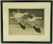 Vintage 1947 Goose Lithograph Used For U.s.a. Mail Duck Stamp By Jack Murray