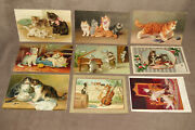 9 Vintage Postcards With Cats And Kittens Cat And Kitten Photos A1