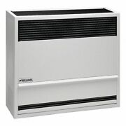 Williams Comfort Products 3003821 Surface-mount Gas Wall Heater, Propane,