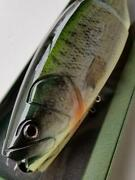 Roman Made Mother Premium Natural Bass Color Lure Swimbait New Unused From Japan