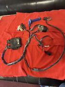 02-07 Honda Oem Crf450r Wire Harness Cdi And Coil