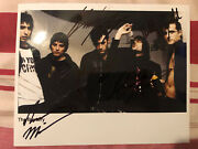 The Bravery Fully Signed 8 X 10 Colour Photo.